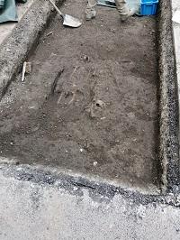 Diagnostics archéologiques du 13 au 24 janvier 2020